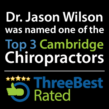 wilson health top 3 cambridge chiropractors